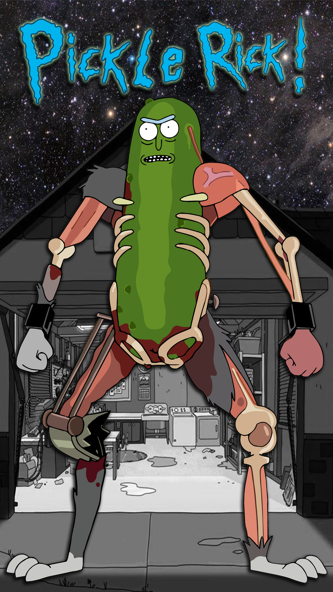 Pickle Rick HD iPhone Wallpaper 1080x1920.jpg